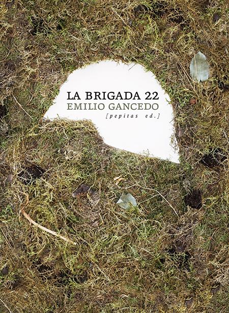 Resultado de imagen de portada libro brigada 22